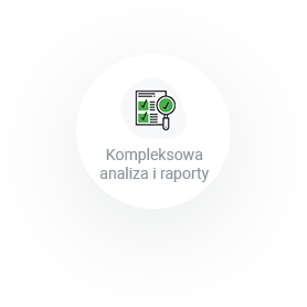 kompleksowa analiza i raporty